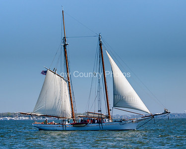 Sailing the Bay at Charleston, SC The Watermark will not show on printed images