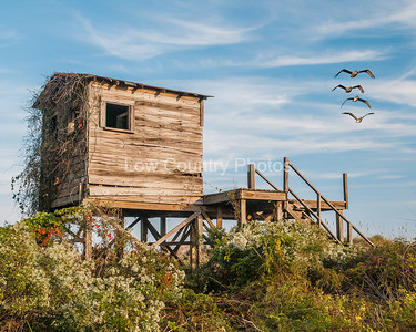The Beach changing shack was a common site on the beach a lot of years ago. This one is on a private island near Little River, SC. The Watermark will not show on printed images