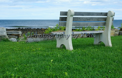 The Bench Beside the Sea