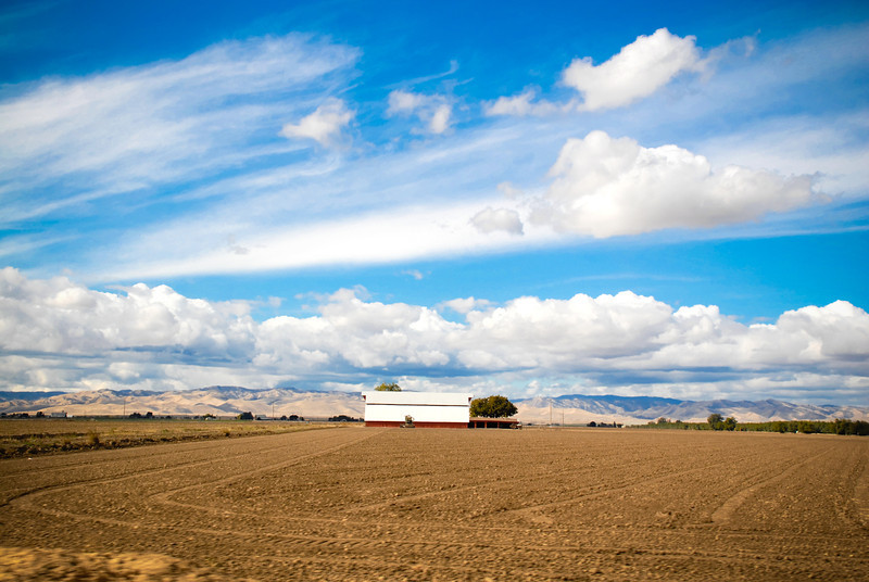 California farmland