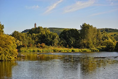 The Duck Pond, Newtownards, County Down.