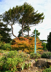Botanic Gardens_32