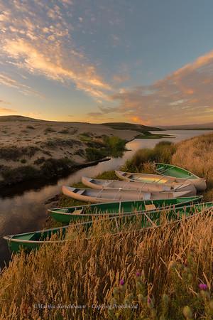 Golden Afternoon on Abbotts Lagoon