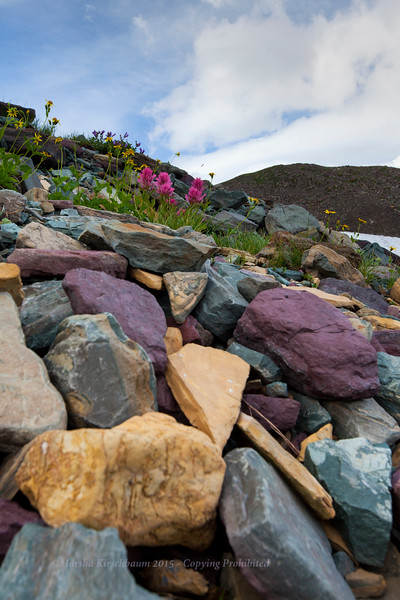 Colored Stones - Logan Pass
