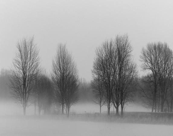 Fog on the Ice