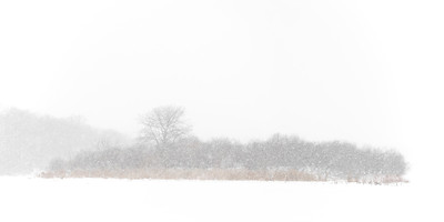 Duck Island in a Blizzard - Fox River in Batavia, Illinois.