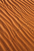 Close up of sand dune at Totem Pole