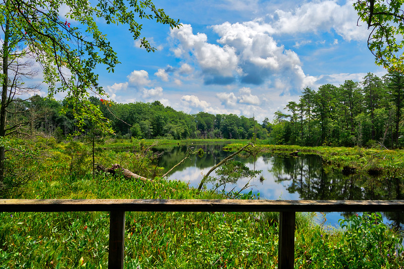 Estell Manor State Park - Lake Lookout