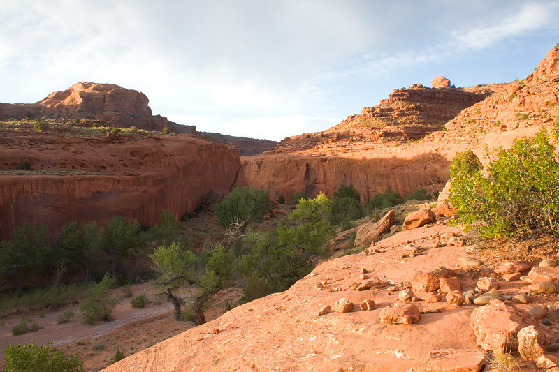 Choprock Canyon -  Grand Staircase-Escalante Wilderness Utah