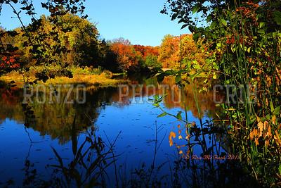 Landscapes Fall 2013 (16a) copy