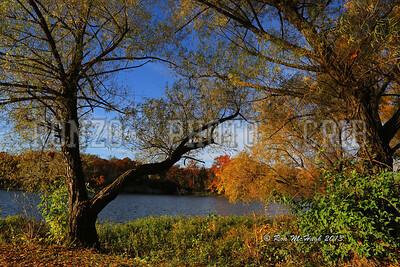 State Lake Fall 2013a_1103-004