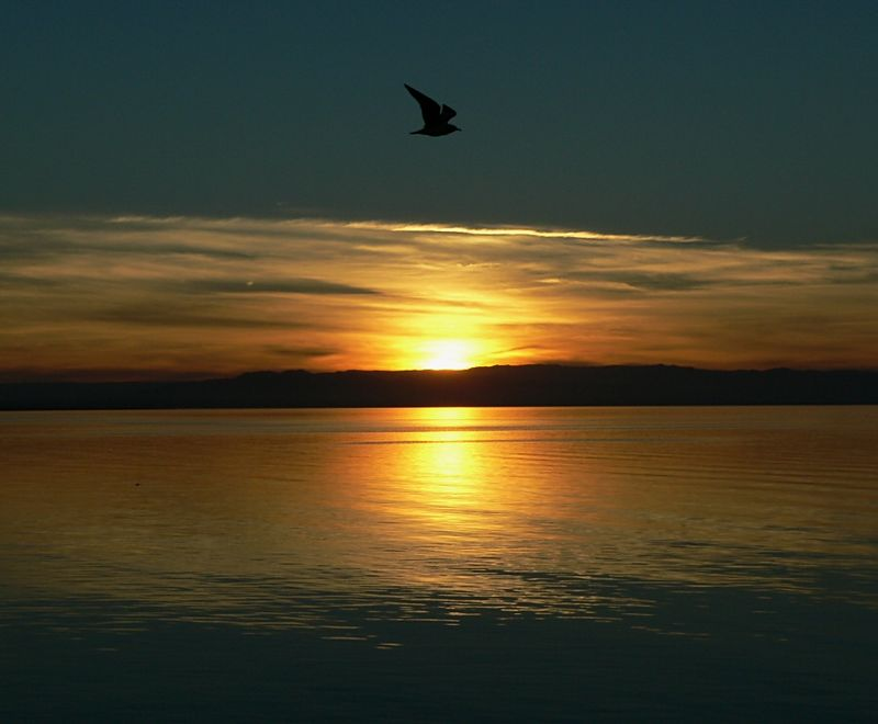 A Salton Sea sunset.