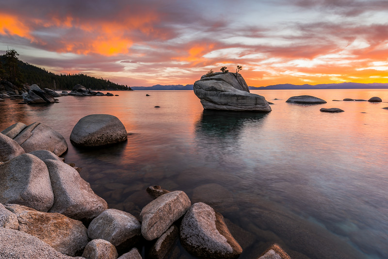 Bonsai Rock Sunset
