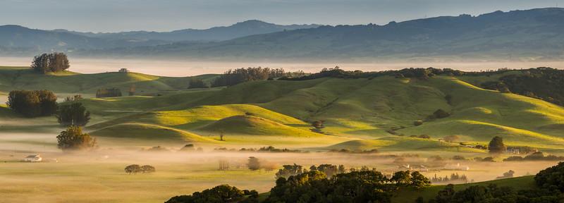 Petaluma Hills Panorama