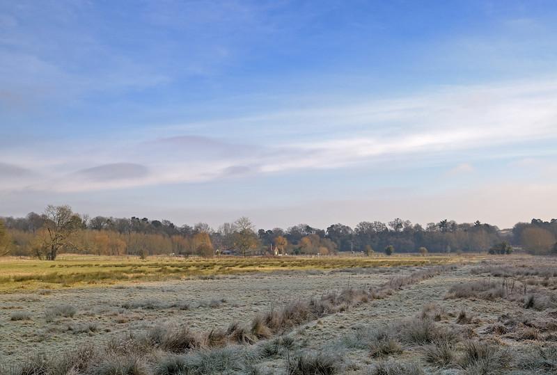 North Downs Way, Surrey, February