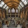 Natural History Museum, December