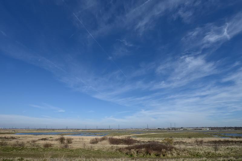 Rainham Marshes, March