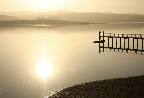 Tomales Bay, Inverness, California