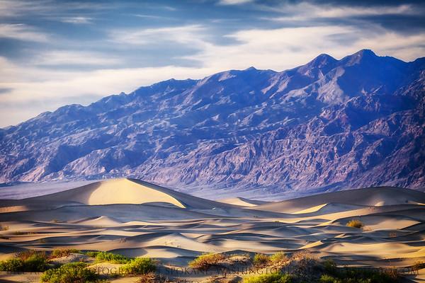 Late Dunes