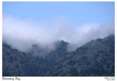Retreating Fog  Fog retreating over the coastal hills above Filoli Gardens.  Filoli, 30 May 2009