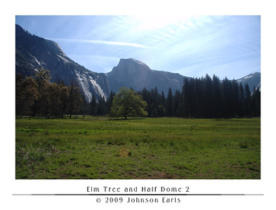 Elm Tree and Half Dome 2  An elm tree stands in the middle of Cook Meadow.  From one of the few areas where visitors are allowed into the meadow, Half Dome rises above the tree.  Yosemite Valley, 30 April 2009.