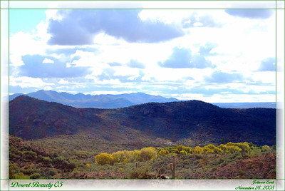 Desert Beauty 05  A view of the desert from outside Colossal Cave State Park.  Tucson, Arizona, 28 November 2008.