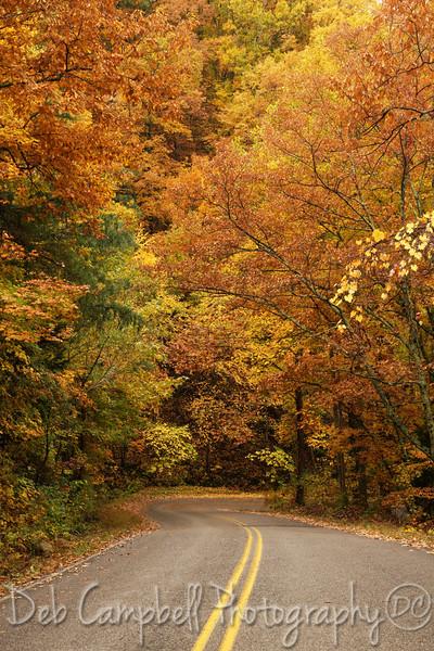 Six Mile Autumn