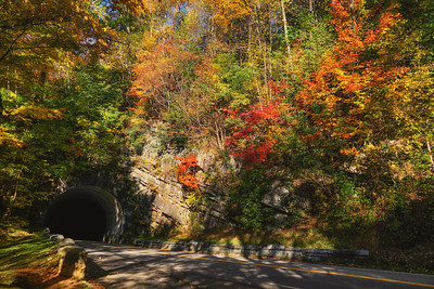 441 Tunnel in Fall Color