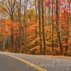 Autumn on Laurel Creek Road