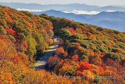 View from Spirit Ridge
