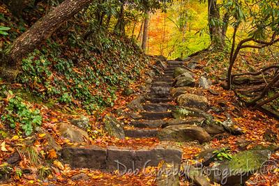 Meigs Creek Trailhead