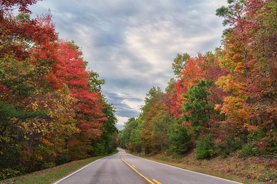 Fall Color 2019