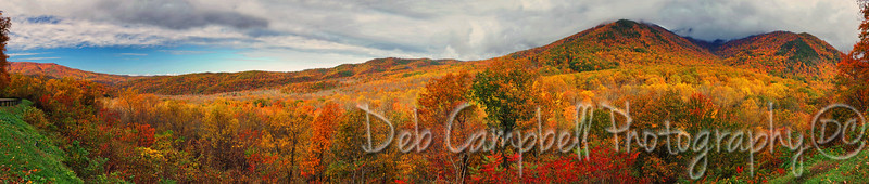 Campbell Overlook in Autumn