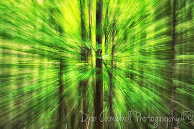 Spring Green Abstract