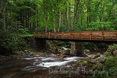 Bridge Greenbriar section of the  Great Smoky Mountains National Park