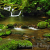 Roaring Fork Motor Nature Trail<br /> Great Smoky Mountains National Park