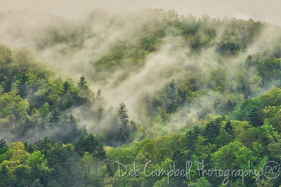 Smoky Mountain Mist