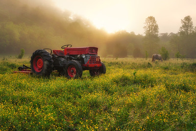 Red Tractor Sunrise