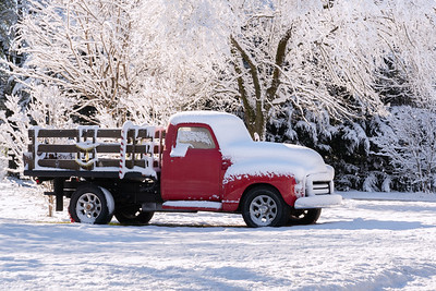 Christmas Snow 2020