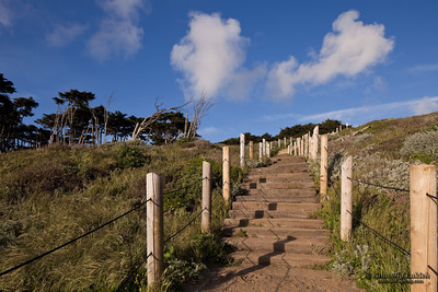 Stairs up the hill.