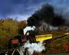 """Cog RR Train climbing"""