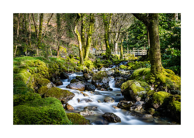 River by Minfford Path Cadair Idris