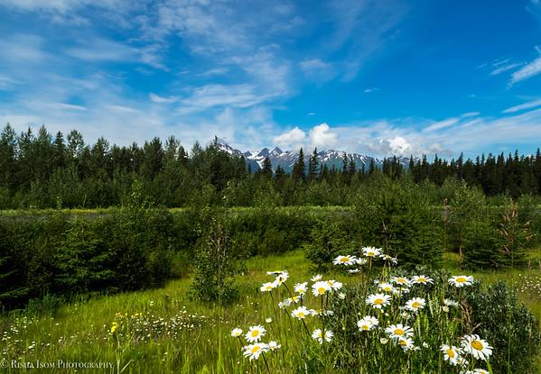 Scenery in British Columbia.
