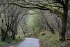 Llanberis, Gwynedd