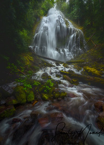 The Mist at Proxy Falls