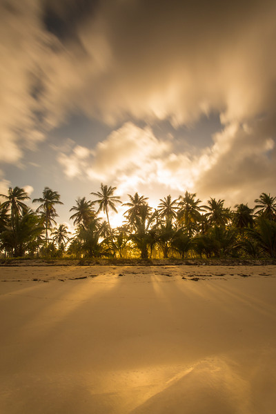 Golden Playa. Playa Rincon, Samana Peninsula, Dominican Republic