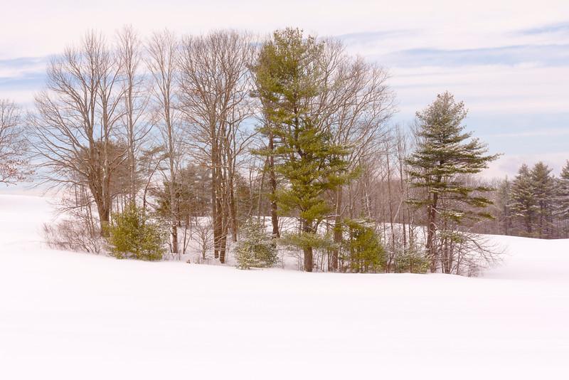 Winter in Maine - 2015