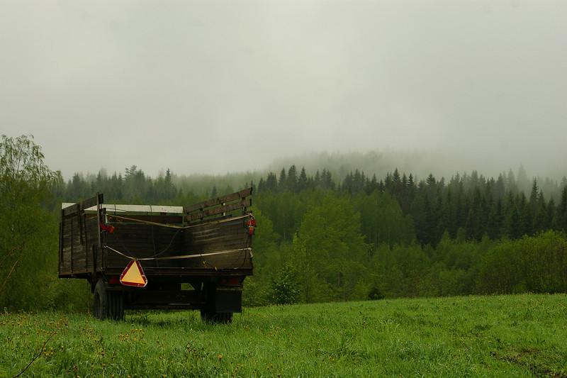 Sumuinen maisema - Misty view