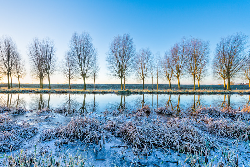 Weather UK: Frost in Cambridgeshire Fens