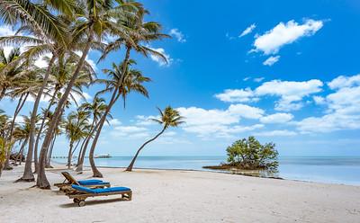 Paradise - Islamorada, Florida Keys